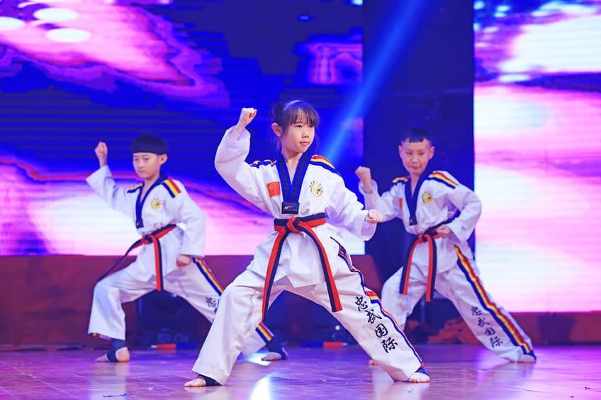 Children Wushu Kungfu
